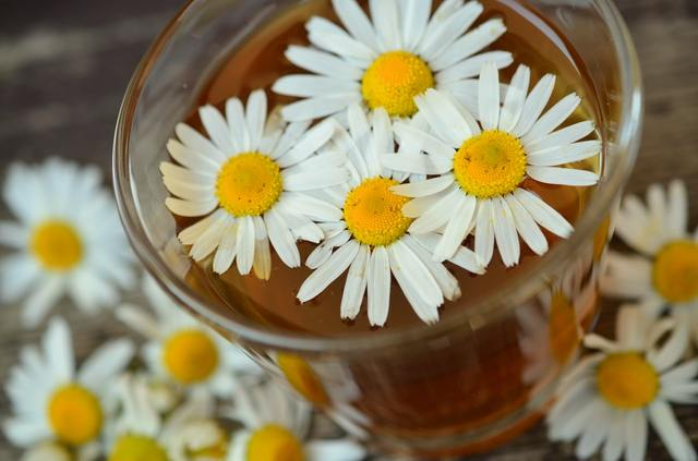Chamomile tea for teenage acne